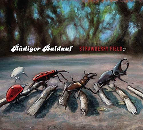 Strawberry fields [CD]